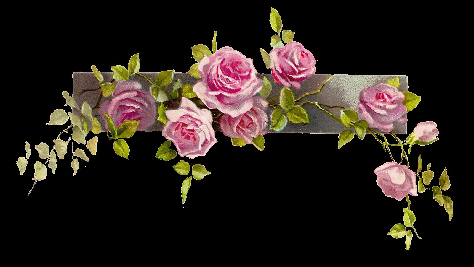 Pink flower border clipart jpg black and white 失聲記 | Pinterest | Victorian and Digital jpg black and white