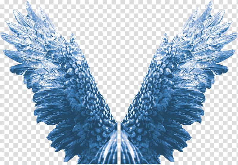 Blue wings images clipart picture library library Eagle Angel Wings Zip , blue wings illustration transparent ... picture library library