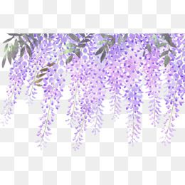 Blue wisteria clipart png library download Painted lavender wisteria flowers | Cards | Flower png images, Free ... png library download