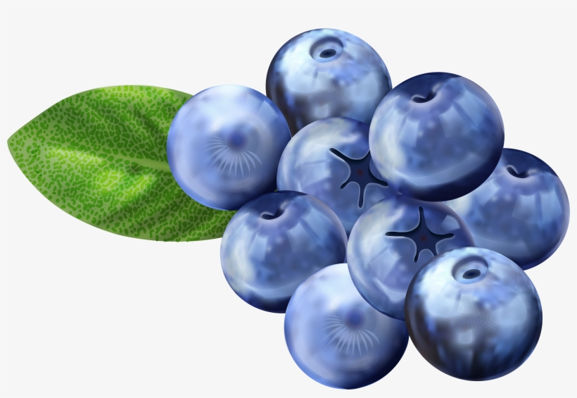 Blueberry images clipart clip art library Blueberry Clipart Png - Blueberries Clipart Transparent PNG ... clip art library