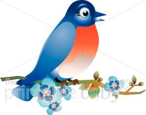 Bluebird clipart clipart royalty free stock Blue Bird Clipart | Animal Baby Clipart clipart royalty free stock