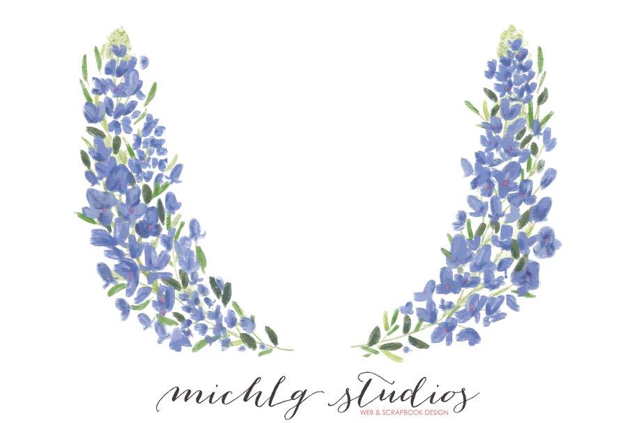 Bluebonnet clipart image Flower clipart Bluebonnet PNG art image