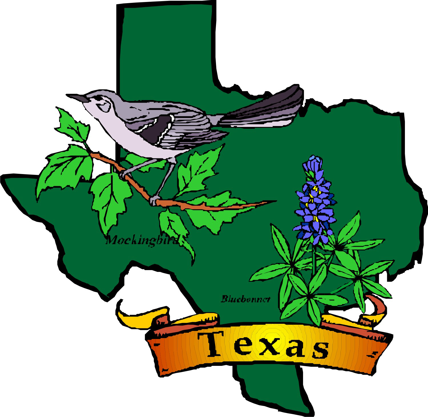 Texas Theme — Day Camp, SHAC png transparent stock