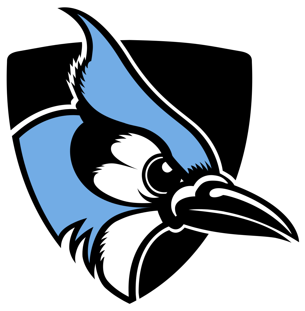 Bluejay basketball clipart