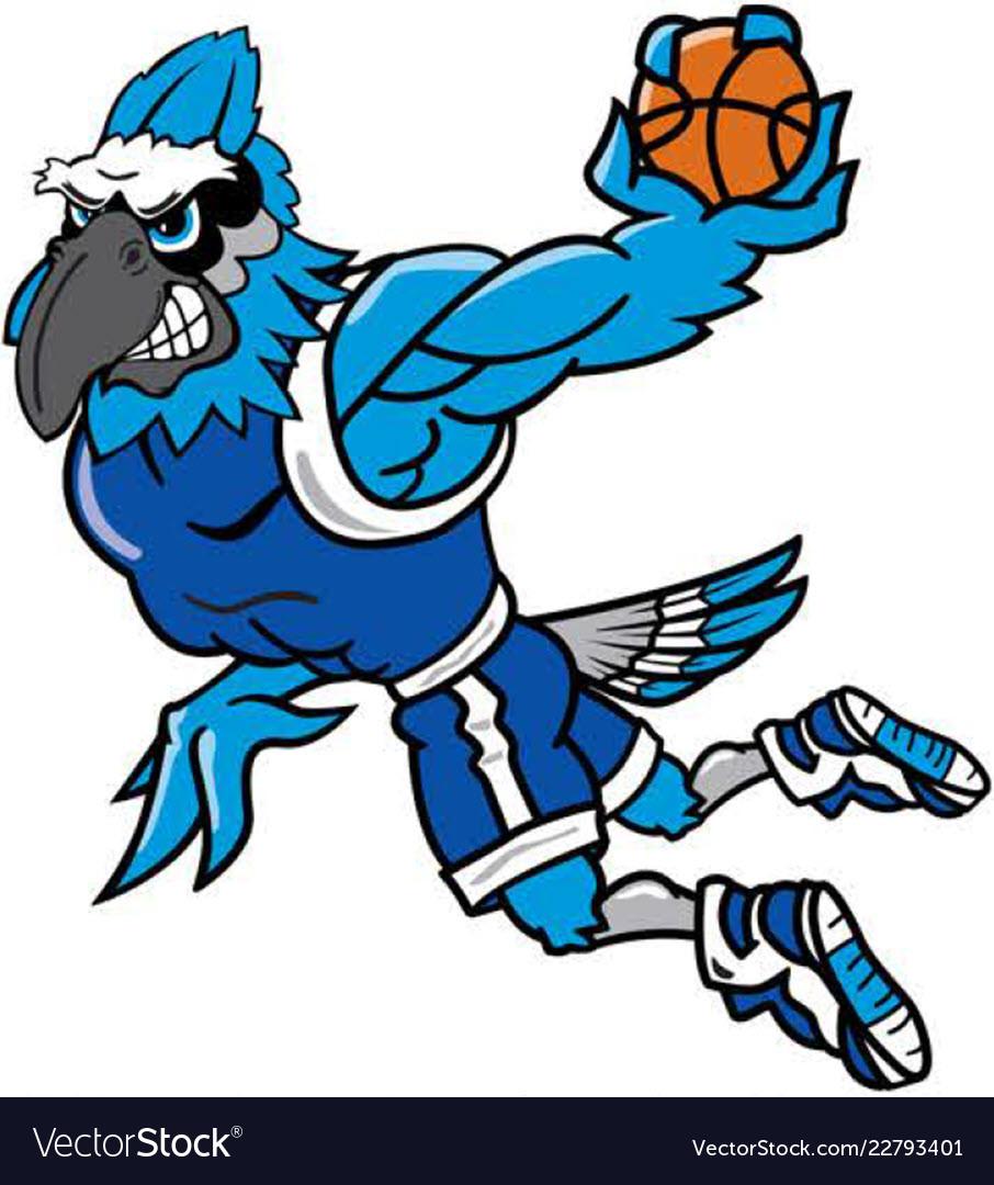 Bluejay mascot clipart banner royalty free library Blue jay basketball sports logo mascot banner royalty free library