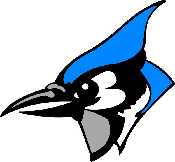 Bluejay mascot clipart image black and white download Blue Jay Bird Clip Art | Free download best Blue Jay Bird Clip Art ... image black and white download