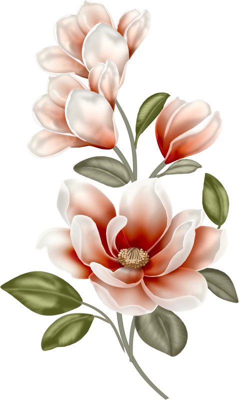 Awakening Collab | Pinterest | Decoupage, Flowers and Flower banner library