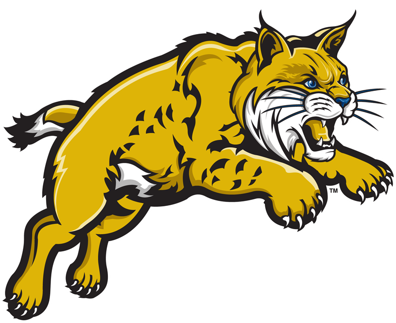 IMLeagues | University of California Merced | Intramural Home banner freeuse download