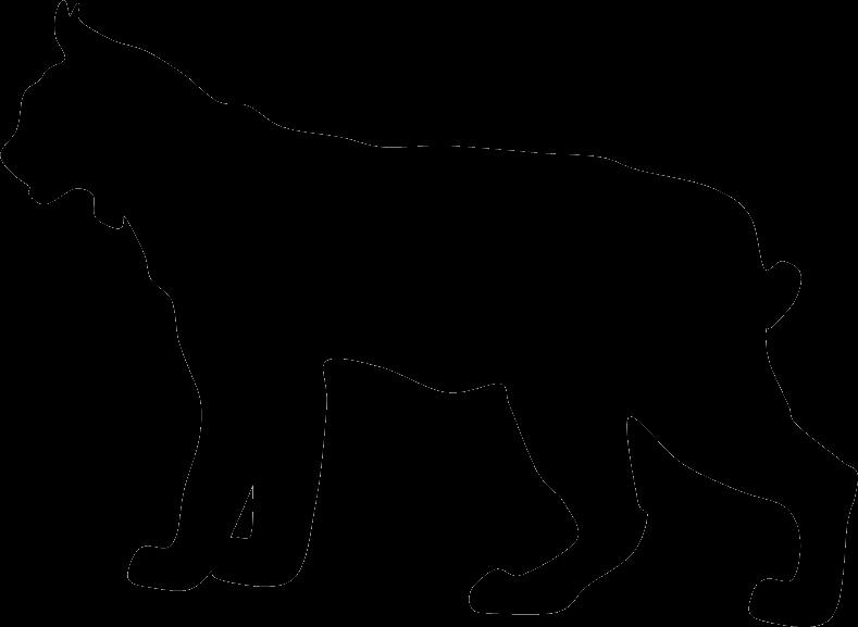 bcwolf graphic transparent stock