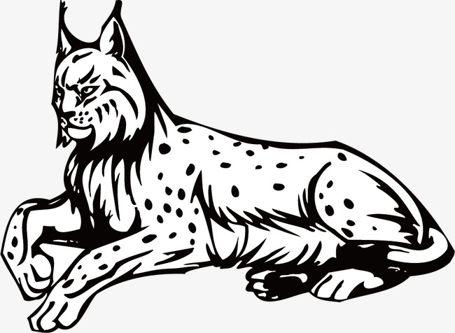 Bobcat clipart black and white clipart black and white stock Bobcat Png Black And White & Free Bobcat Black And White.png ... clipart black and white stock
