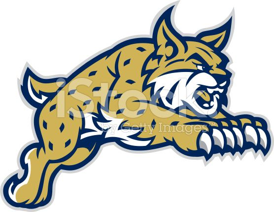 Bobcat mascot clipart image freeuse This leaping Bobcat mascot is great for any school based design ... image freeuse