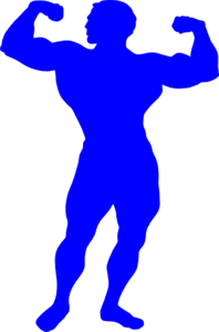 Body bilder clip art. Bodybuilder blue at clker