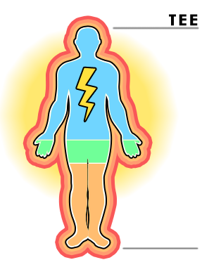 Body energy clipart clipart freeuse Energy Expenditure | McRoberts - Moving technology clipart freeuse