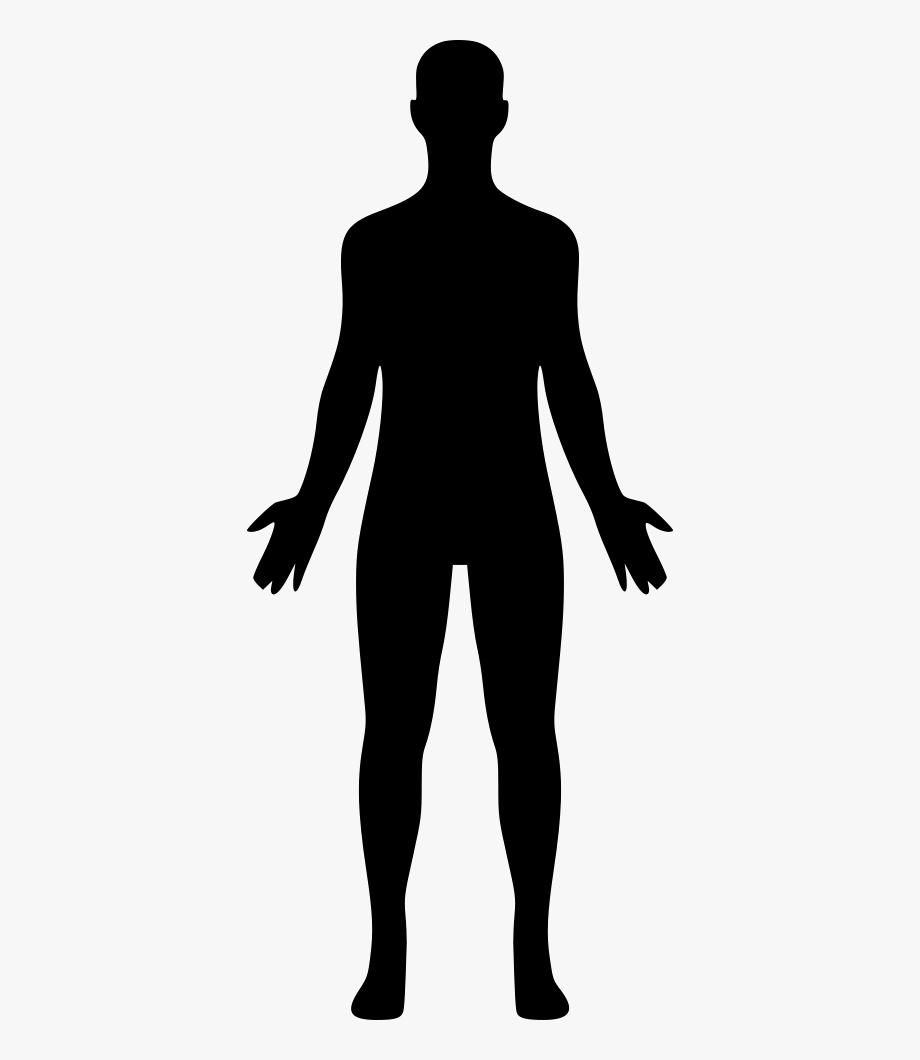 Body silhousette clipart banner transparent library Human Body Icon Png - Human Body Silhouette Png #481383 - Free ... banner transparent library