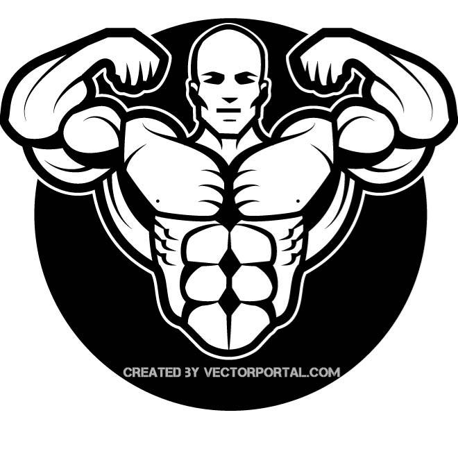 Bodybuilding clipart free download graphic library stock BODYBUILDER VECTOR DRAWING - Free vector image in AI and EPS format. graphic library stock