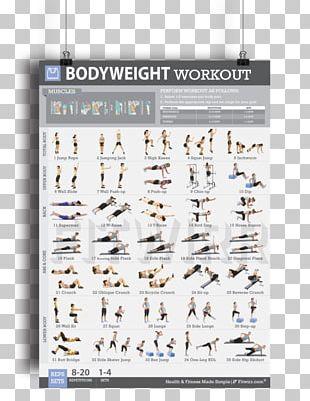 Bodyweight exercise clipart image freeuse stock Bodyweight Exercise PNG Images, Bodyweight Exercise Clipart Free ... image freeuse stock