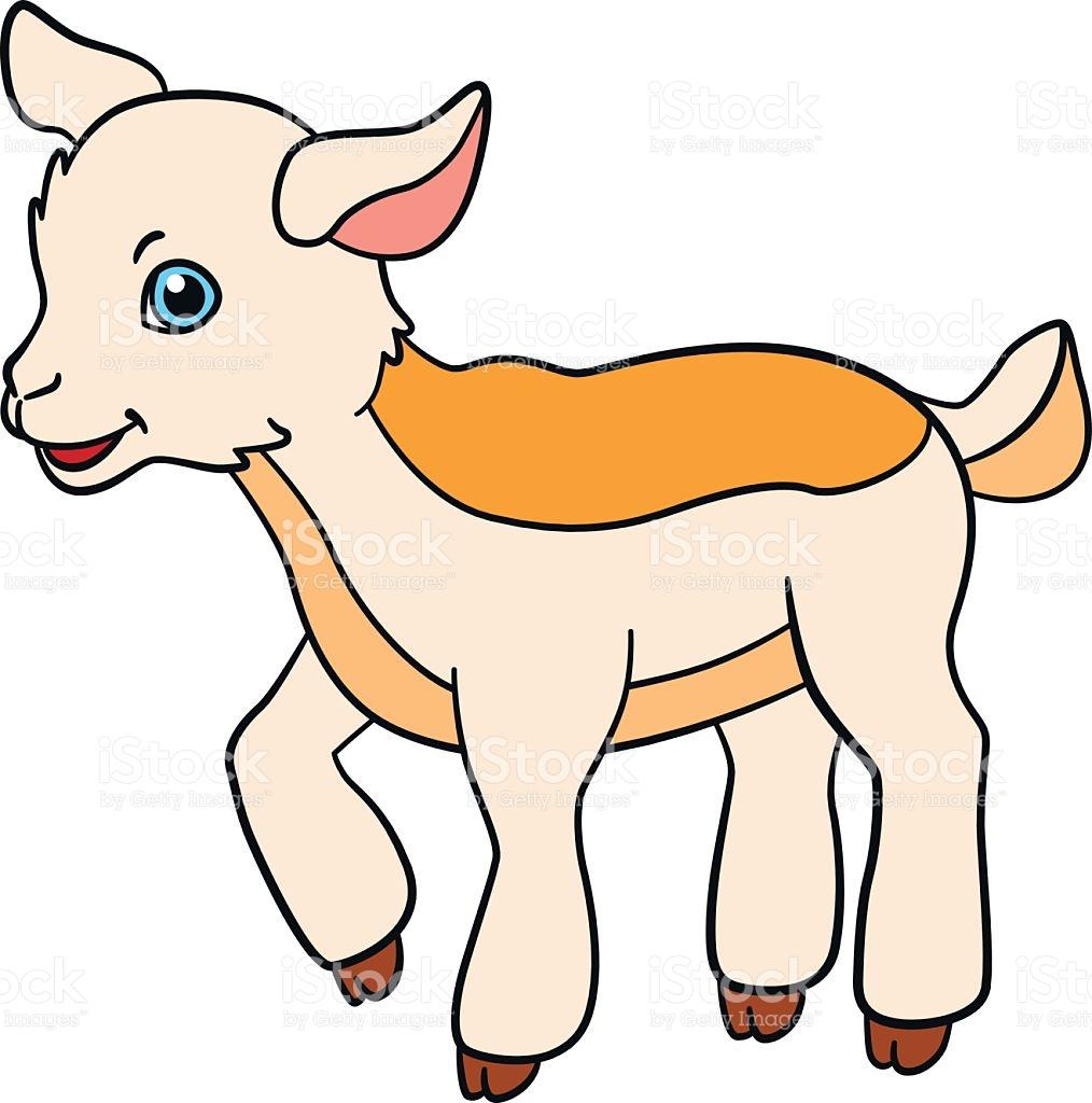 Boer goat kid clipart vector transparent download Baby Goat Clipart   Free download best Baby Goat Clipart on ... vector transparent download