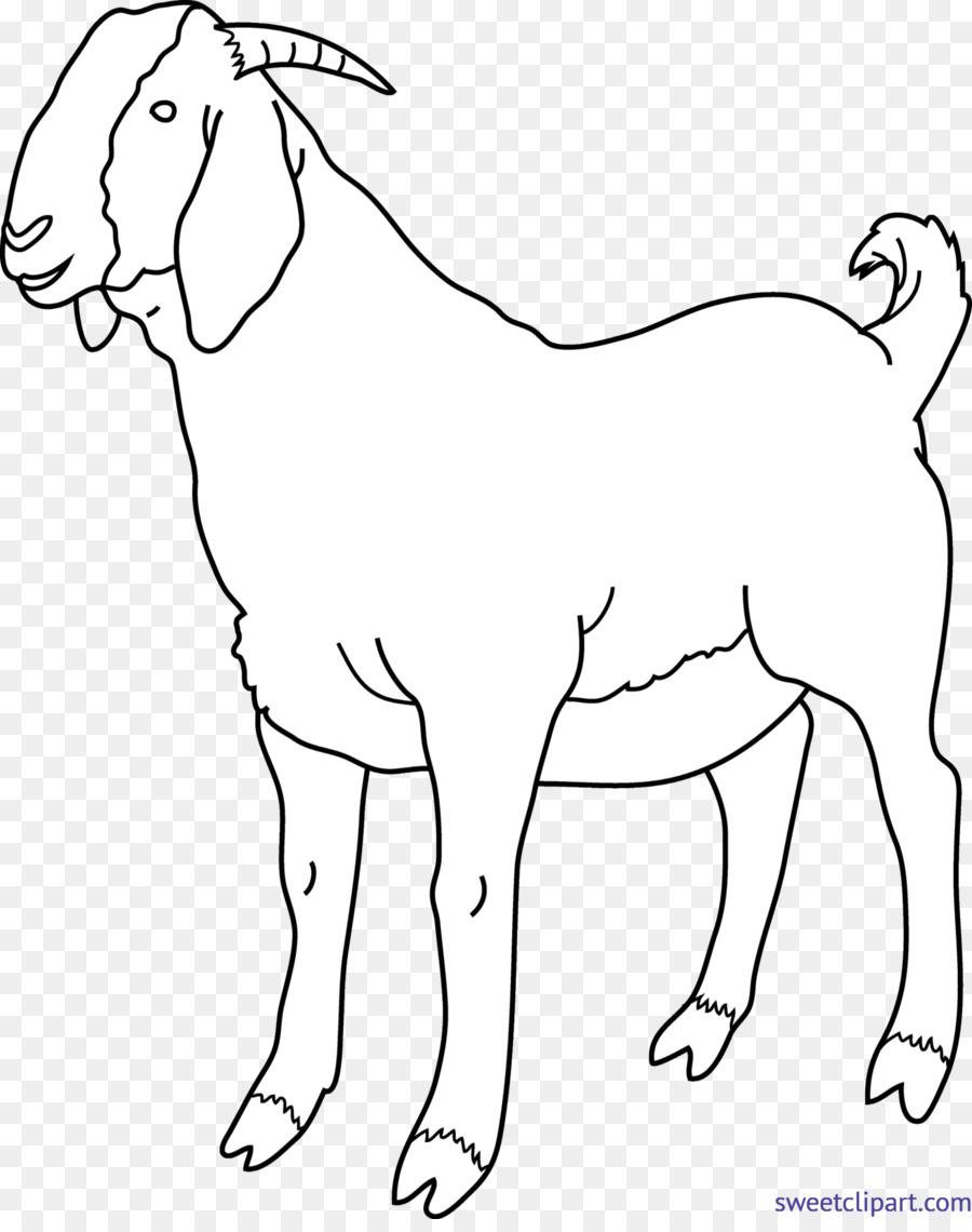 Boer goat kid clipart clip art royalty free stock Clip art Boer goat Black Bengal goat Image Russian White goat ... clip art royalty free stock