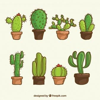 Little cactus cliparts black and white stock Cactus Vectors, Photos and PSD files | Free Download black and white stock