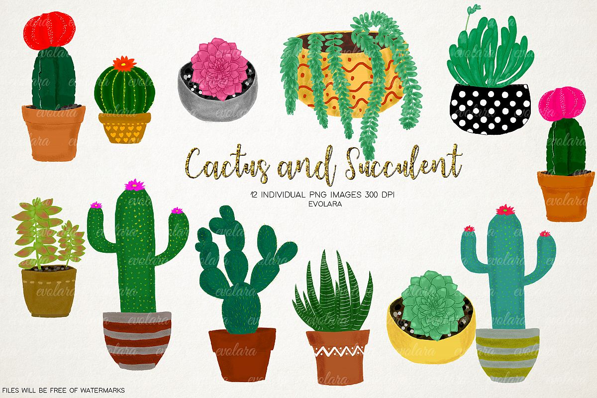 Boho cactus clipart free png free stock Boho Cactus Clipart Succulents Clipart Plant Clipart Cactus png free stock