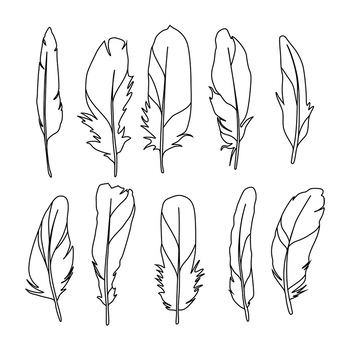 Boho feathers clipart clipart stock Feather Clipart, Boho Feather Clipart, Tribal Clipart, Bird Feather Drawings clipart stock