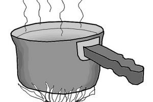 Boiling water clipart clip free Clipart of boiling water 2 » Clipart Portal clip free