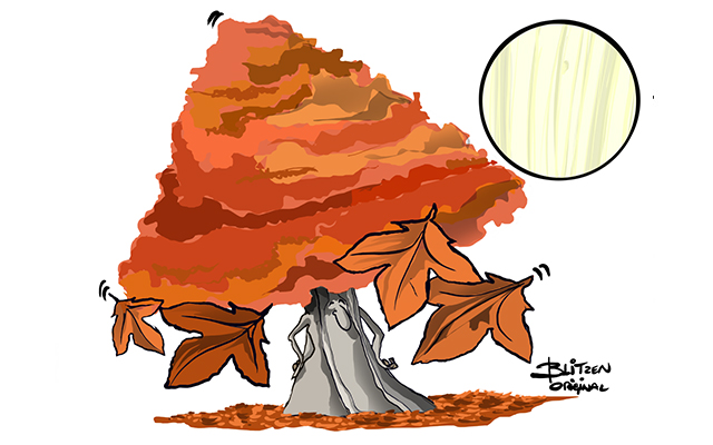 Bois d automne clipart