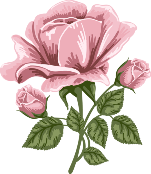 Bold watercolor flower clipart blue yellow pink picture black and white download Pink Rose Art PNG Picture | fleurs | Pinterest | Rose art, Pink ... picture black and white download