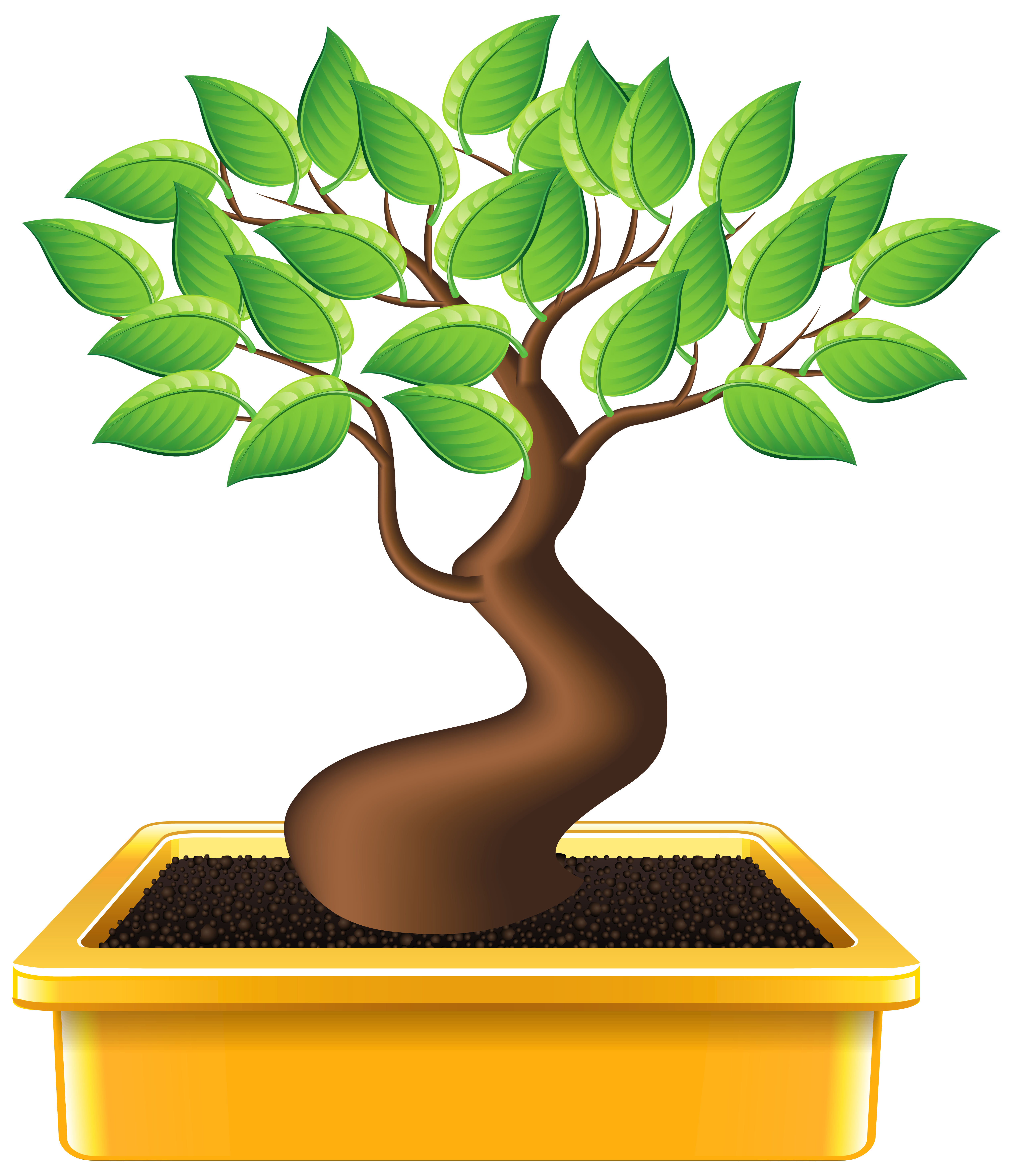 Bonsai images clipart png freeuse Bonsai PNG Clipart Image | Gallery Yopriceville - High-Quality ... png freeuse