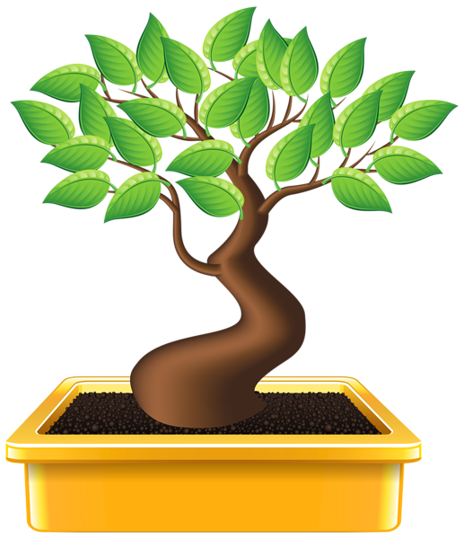Bonsai tree clipart vector transparent download Gallery - Trees PNG Clipart vector transparent download