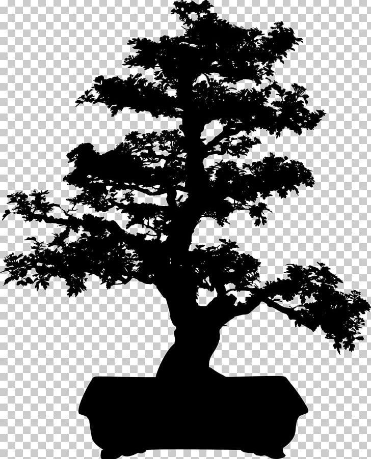 Bonsai tree silhouette clipart vector black and white library Bonsai Tree Silhouette PNG, Clipart, Black And White, Bonsai, Branch ... vector black and white library