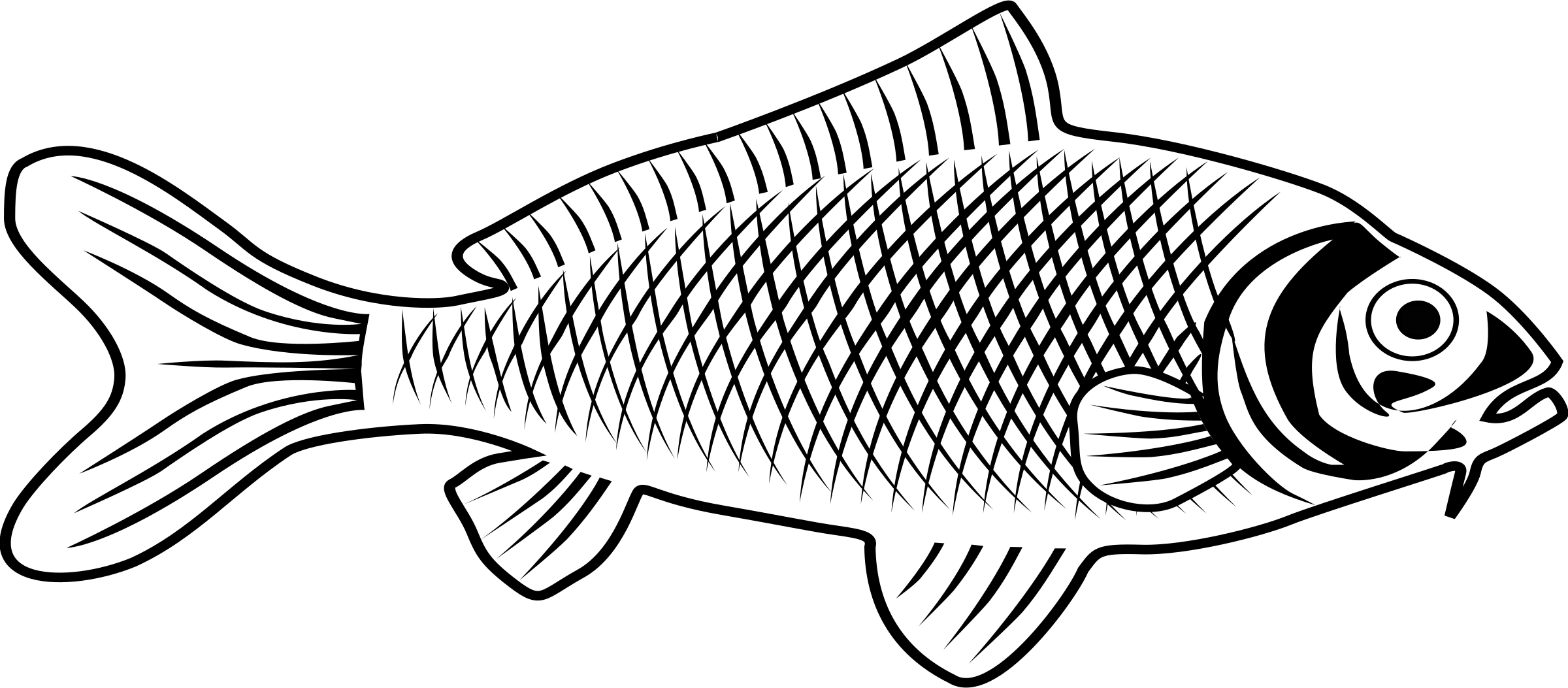 Fish line clipart clip art transparent stock Clipart - fish clip art transparent stock