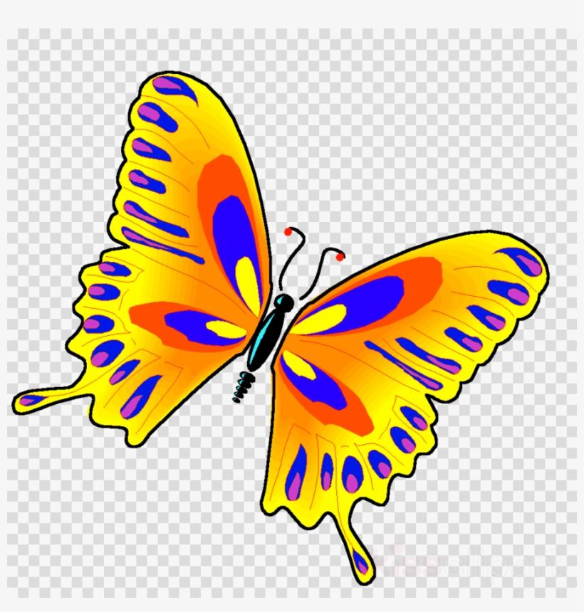 Borboleta clipart svg black and white download Jewish Butterfly Clipart Butterfly Borboleta Insect - Butterfly ... svg black and white download