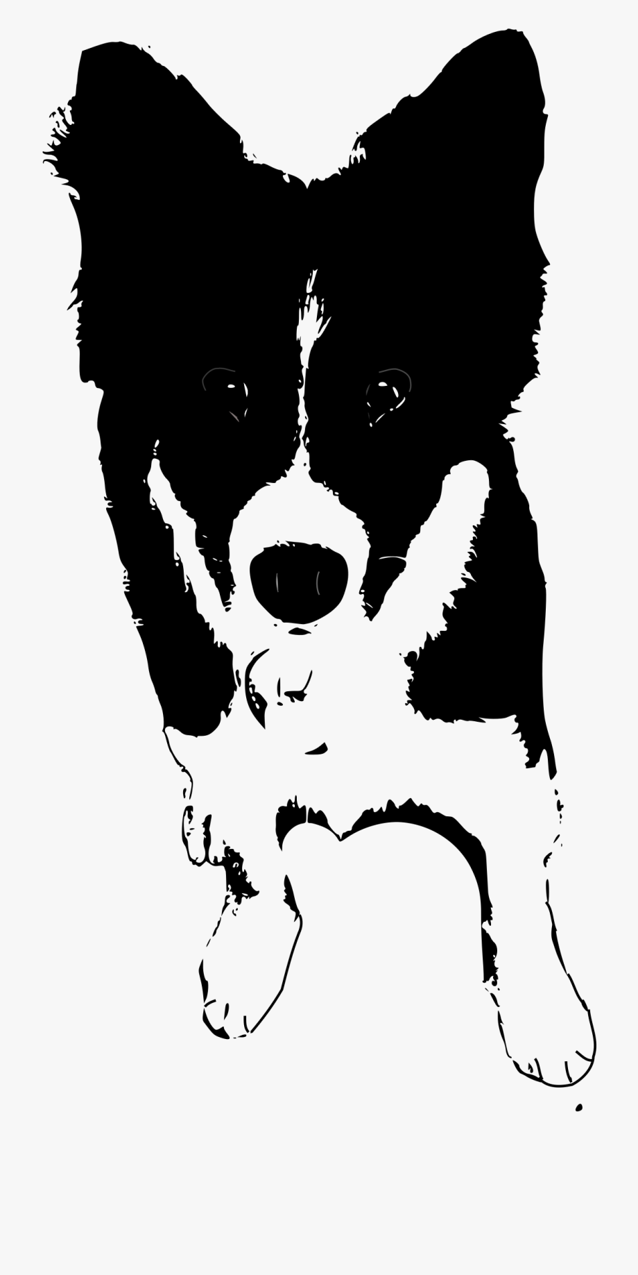 Border collies clipart banner freeuse library Border Collie Rough Clip Art Doberman Ⓒ - Clipart Border Collie ... banner freeuse library