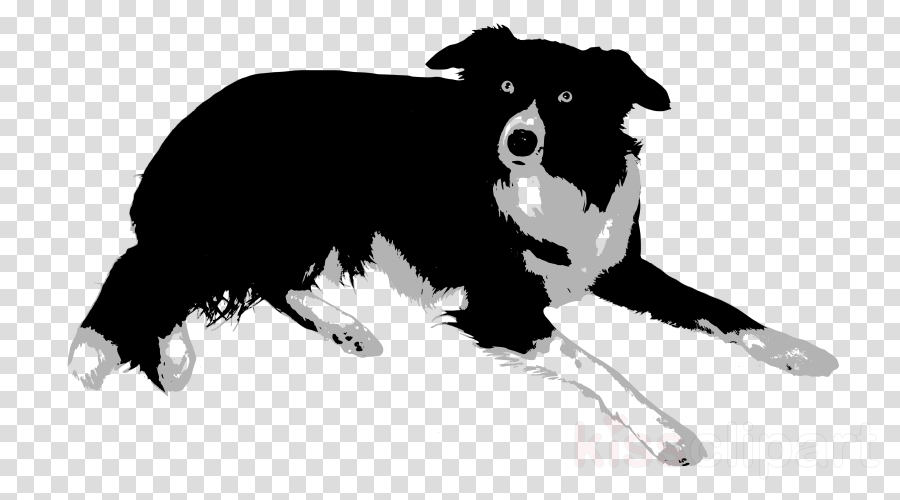 Border collies clipart clipart transparent library Black And White Border clipart - Puppy, Black, Dog, transparent clip art clipart transparent library