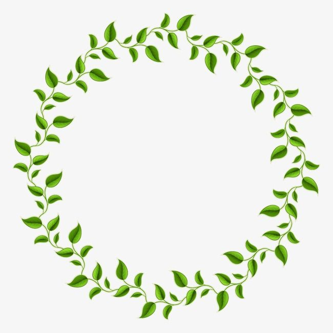 Borders circle leaves clipart png transparent stock Green Leaves Decorative Circle, Decorative Olive Branch, Green ... png transparent stock