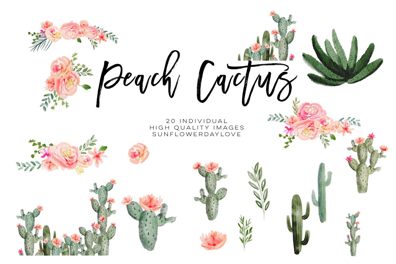 Floran clipart. Succulent peach watercolor cliparts