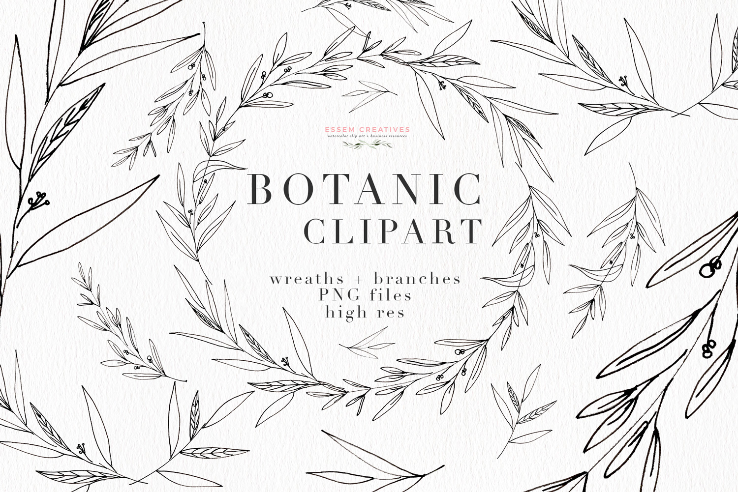 Watercolor boho foliage clipart clip art library stock Botanical Clipart, Botanical Print Illustration, Greenery Eucalyptus Olive  Line Art clip art library stock