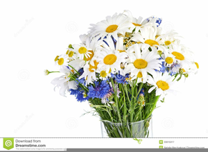 Bouquet of daisies clipart picture freeuse stock Free Clipart Daisy Bouquet | Free Images at Clker.com - vector clip ... picture freeuse stock