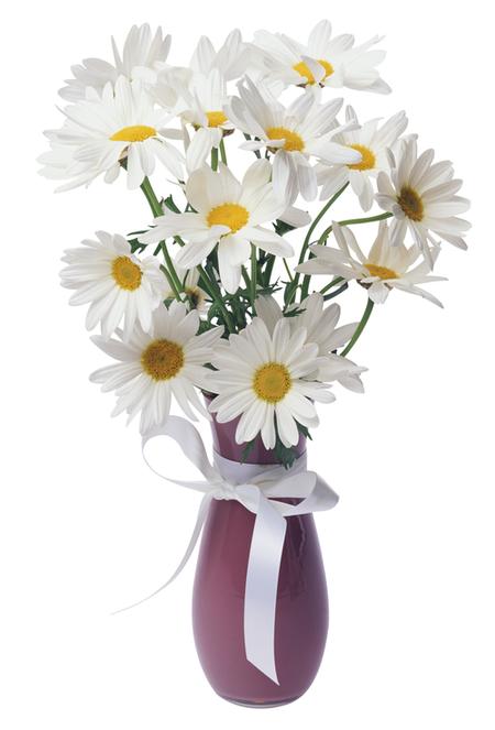 Bouquet of daisies clipart transparent Daisies Transparent Vase Bouquet | Gallery Yopriceville - High ... transparent