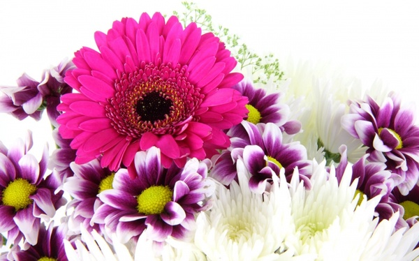 Bouquet of flowers pictures free banner library Flower bouquets pictures free stock photos download (10,931 Free ... banner library