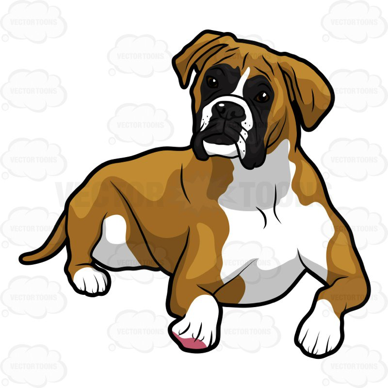 Boxers dogs clipart clip library stock Collection of Boxer clipart   Free download best Boxer clipart on ... clip library stock
