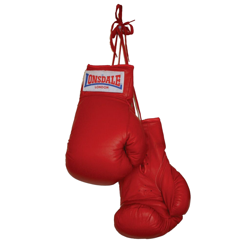 Boxing turkey clipart clip free library Download Boxing Gloves Clipart HQ PNG Image   FreePNGImg clip free library