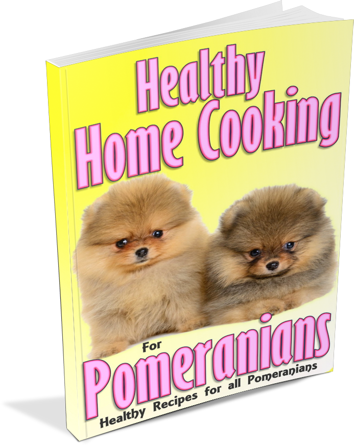Boy feeding dog clipart banner royalty free Healthy Home Cooking For Your Pomeranian banner royalty free
