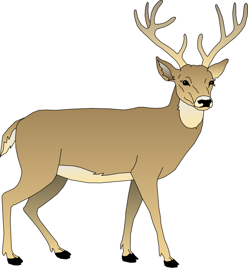 Boy winter deer clipart jpg royalty free Whitetail - 900*830 - Free Clipart Download - Clipartimage #336527 jpg royalty free