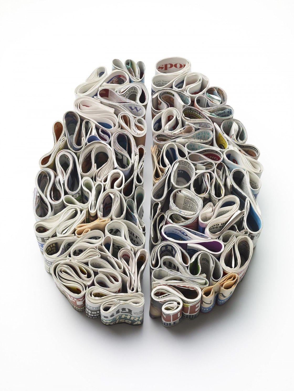 Brain as sponge clipart png free paper brain #SolarLifeBeautifulPeople   Anatomy Euphoria in 2019 ... png free