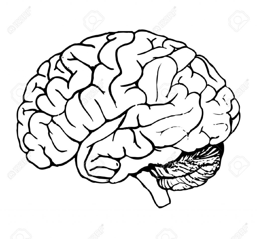 Brain filled black clipart clipart black and white Simple Brain Drawing | Free download best Simple Brain Drawing on ... clipart black and white