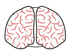 Brain front view clipart banner library stock Free Brain Drawing Cliparts, Download Free Clip Art, Free Clip Art ... banner library stock