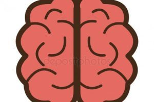 Brain front view clipart svg black and white download Brain clipart front view 4 » Clipart Portal svg black and white download