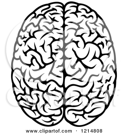 Brain frontal view clipart black and white banner free Brain Black And White Clipart | Free download best Brain Black And ... banner free
